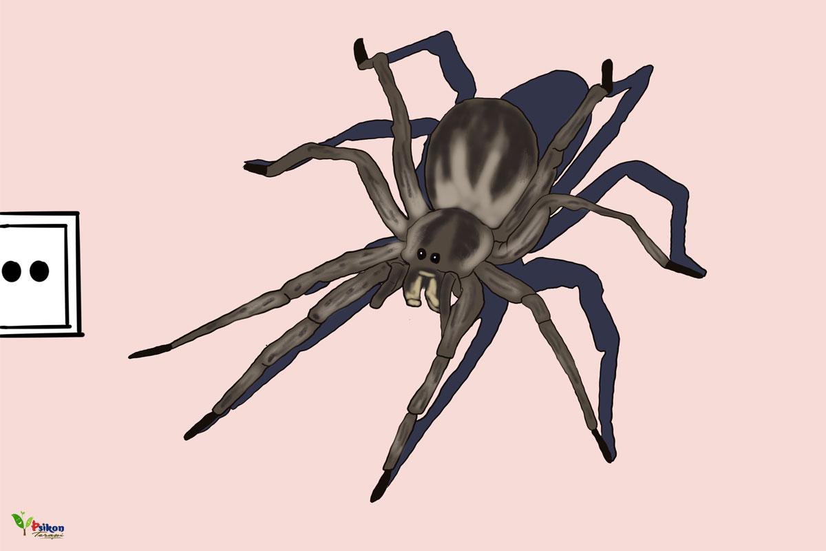 En Sık Rastlanan 10 Fobi Türü