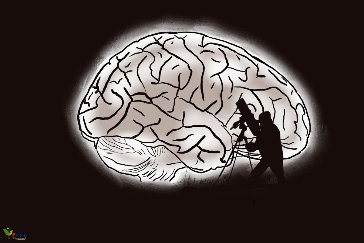 Psikolojide Zeka Testleri